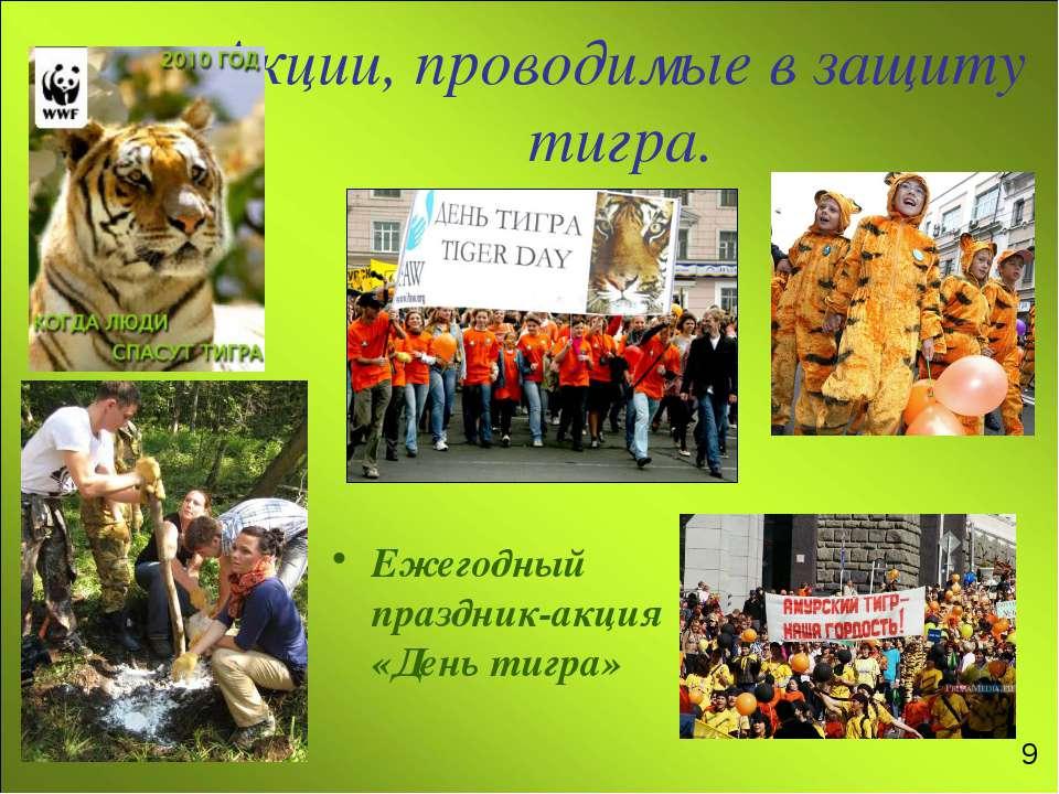 Акции, проводимые в защиту тигра. Ежегодный праздник-акция «День тигра» 9