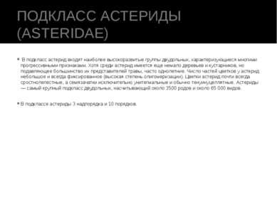 ПОДКЛАСС АСТЕРИДЫ (ASTERIDAE) В подкласс астерид входят наиболее высокоразви...