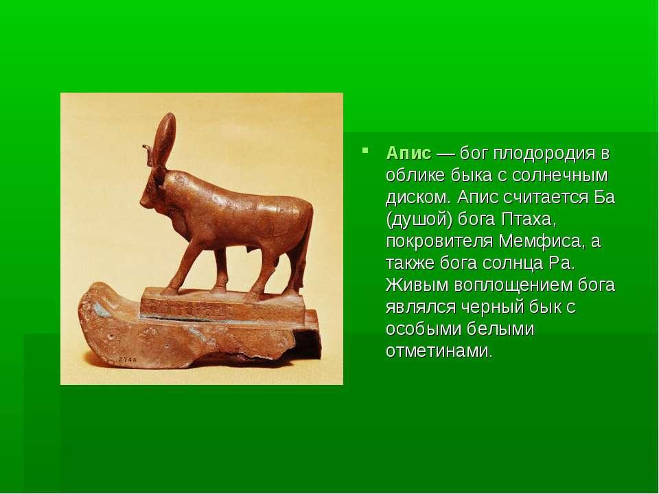 Апис — бог плодородия в облике быка с солнечным диском. Апис считается Ба (ду...