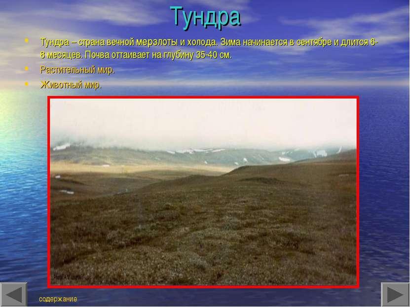 Тундра Тундра – страна вечной мерзлоты и холода. Зима начинается в сентябре и...