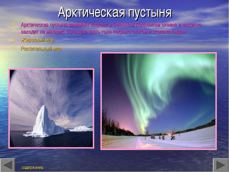Арктическая пустыня Арктическая пустыня занимает острова в Северном Ледовитом...