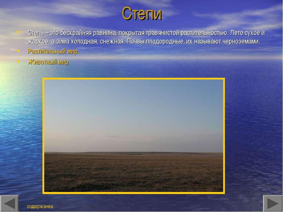 Степи Степь – это бескрайняя равнина, покрытая травянистой растительностью. Л...