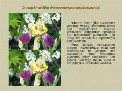 Фильтр Smart Blur вычисляет разницу между областями цвета для определения гра...