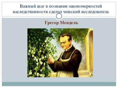 Важный шаг в познании закономерностей наследственности сделал чешский исследо...