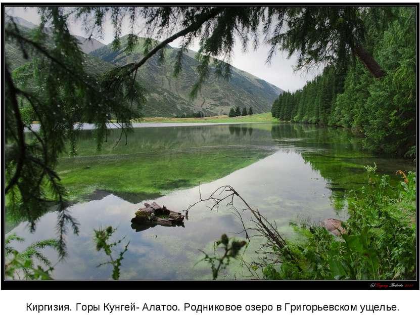 Киргизия. Горы Кунгей- Алатоо. Родниковое озеро в Григорьевском ущелье.