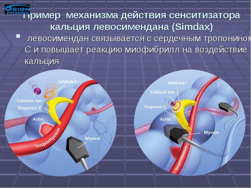 Пример механизма действия сенситизатора кальция левосимендана (Simdax) левоси...