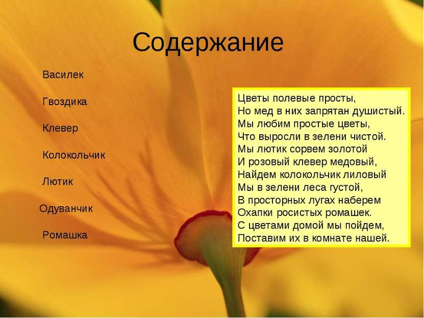 Содержание Ромашка Василек Колокольчик Лютик Одуванчик Гвоздика Клевер Цветы ...