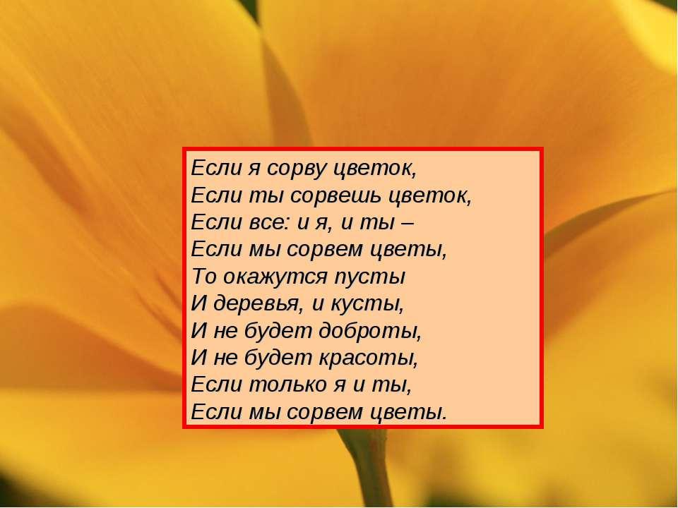 Если я сорву цветок, Если ты сорвешь цветок, Если все: и я, и ты – Если мы со...