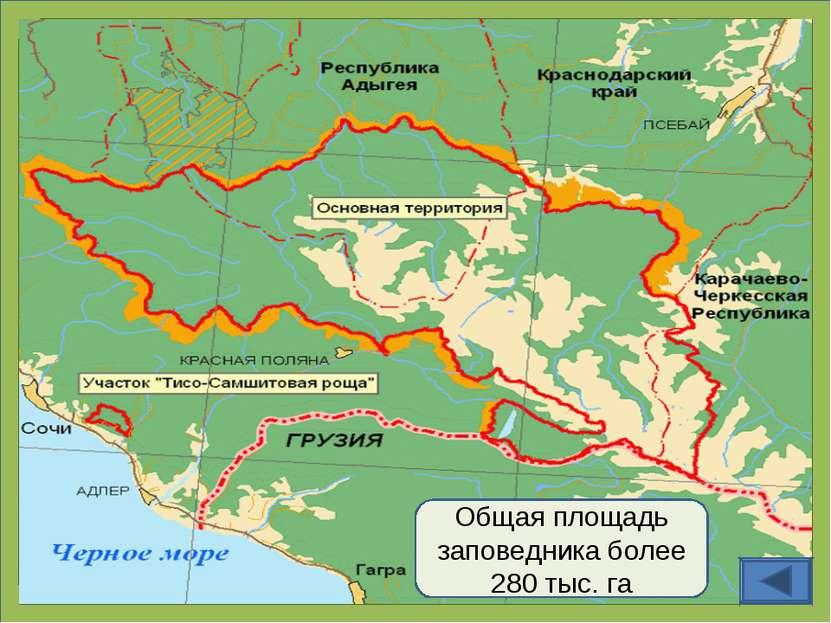 Общая площадь заповедника более 280 тыс. га