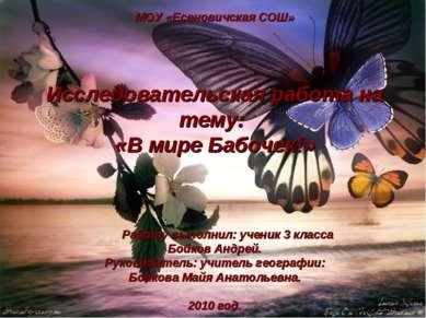 МОУ «Есеновичская СОШ» Исследовательская работа на тему: «В мире Бабочек!» Ра...