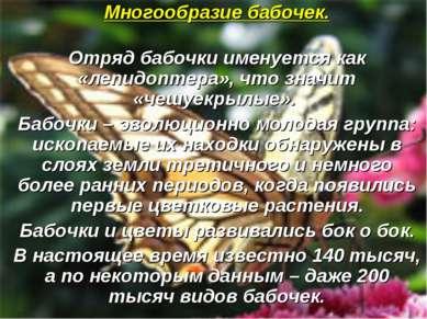 Многообразие бабочек. Отряд бабочки именуется как «лепидоптера», что значит «...