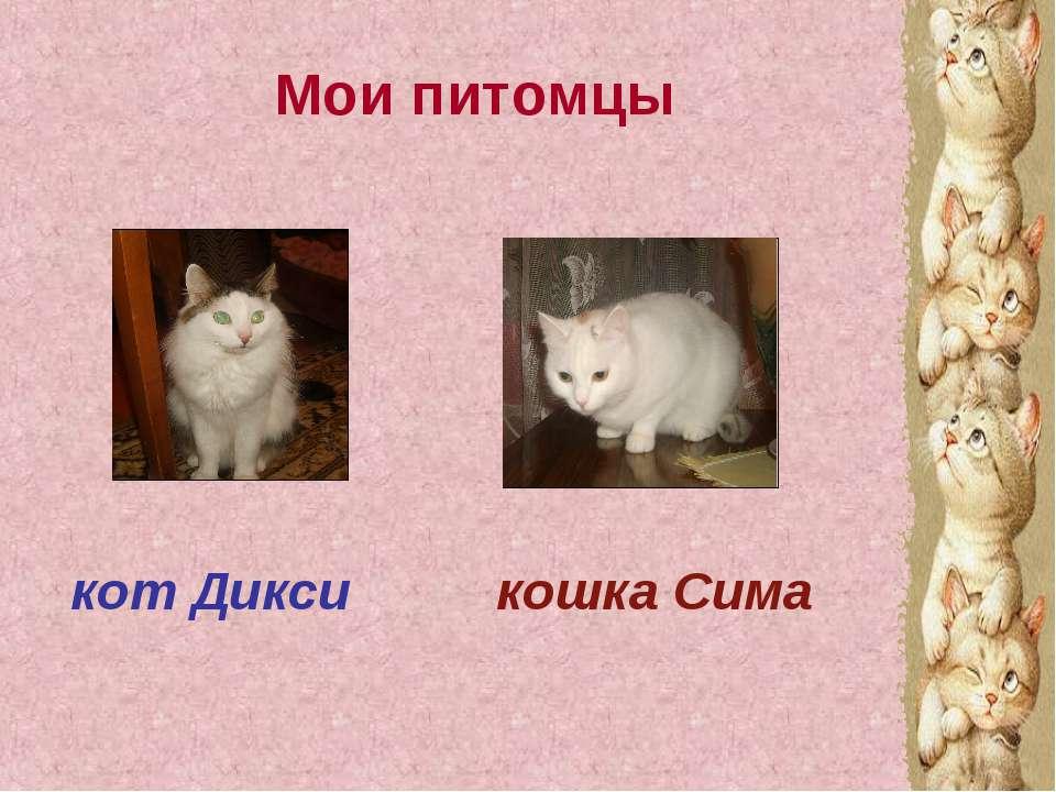 Мои питомцы кот Дикси кошка Сима