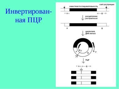 Инвертирован-ная ПЦР