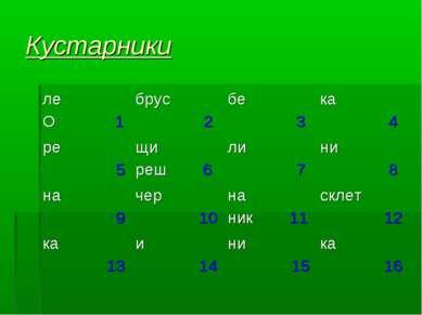 Кустарники ле О 1 брус 2 бе 3 ка 4 ре 5 щи реш 6 ли 7 ни 8 на 9 чер 10 на ник...