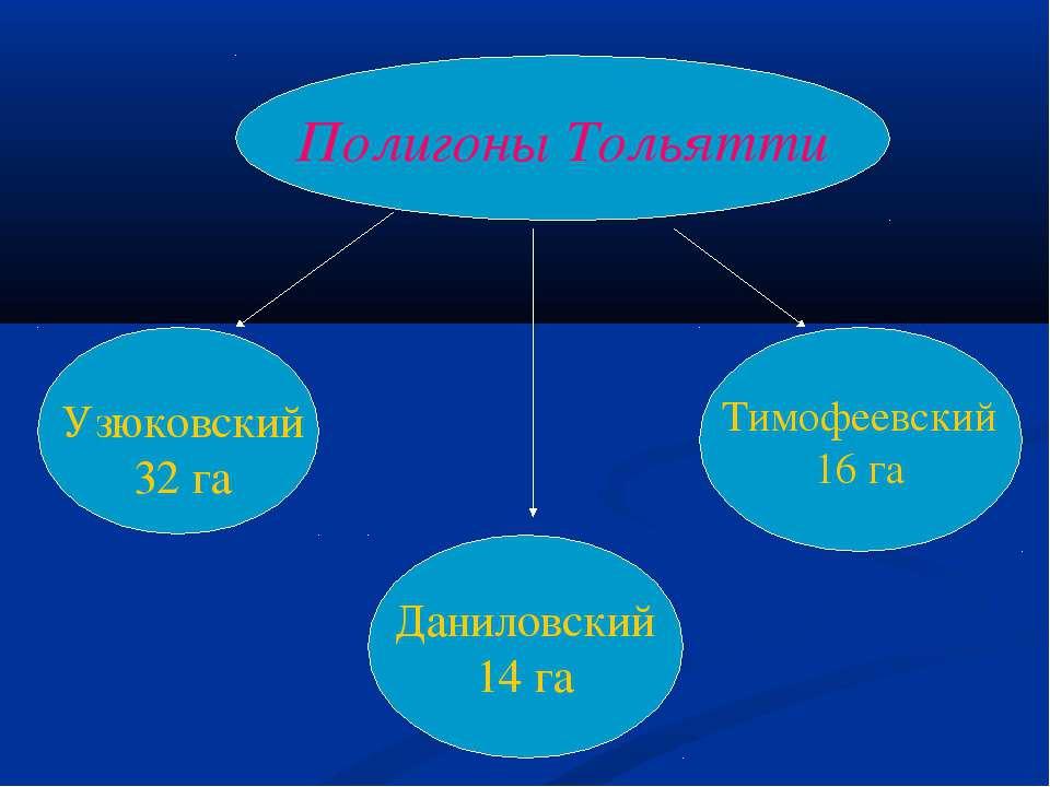 Полигоны Тольятти Даниловский 14 га Тимофеевский 16 га Узюковский 32 га