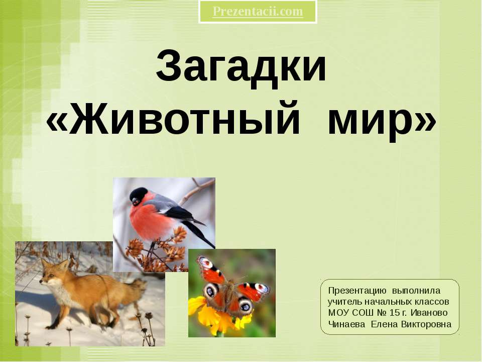 Загадки «Животный мир» Презентацию выполнила учитель начальных классов МОУ СО...