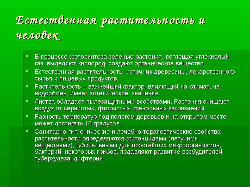 Естественная растительность и человек В процессе фотосинтеза зеленые растения...