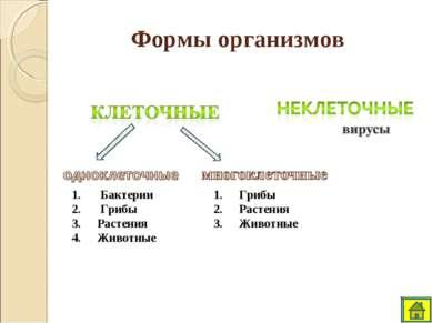 Формы организмов