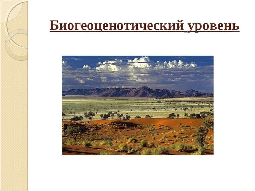 Биогеоценотический уровень