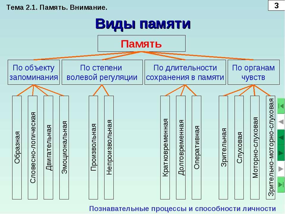 Виды памяти Память Познавательные процессы и способности личности По объекту ...