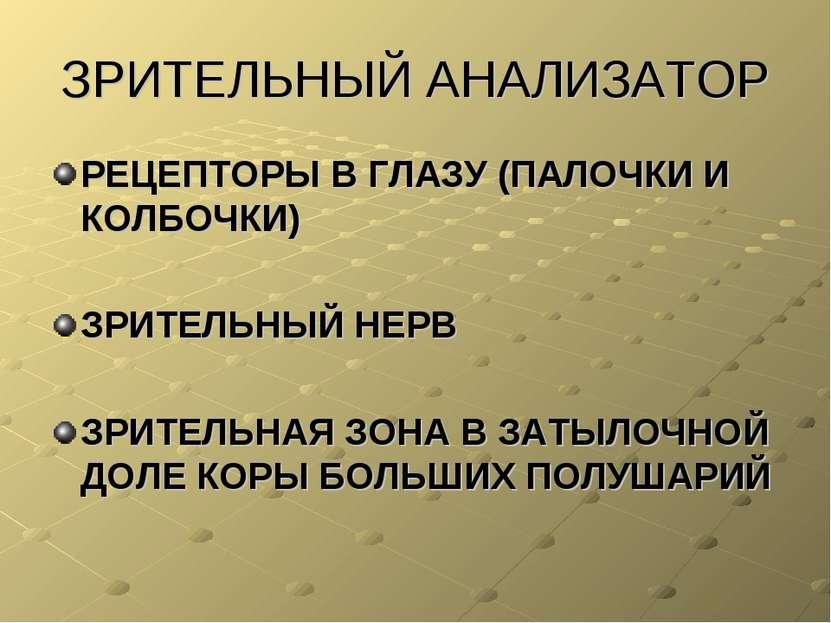 ЗРИТЕЛЬНЫЙ АНАЛИЗАТОР РЕЦЕПТОРЫ В ГЛАЗУ (ПАЛОЧКИ И КОЛБОЧКИ) ЗРИТЕЛЬНЫЙ НЕРВ ...