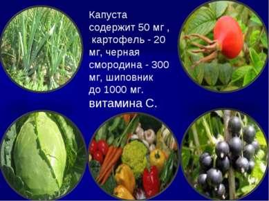Капуста содержит 50 мг , картофель - 20 мг, черная смородина - 300 мг, шиповн...