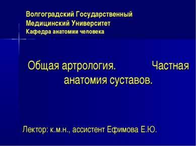 Волгоградский Государственный Медицинский Университет Кафедра анатомии челове...