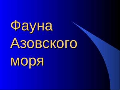 Фауна Азовского моря