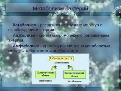 Метаболизм бактерий Катаболизм - расщепление крупных молекул с освобождением ...