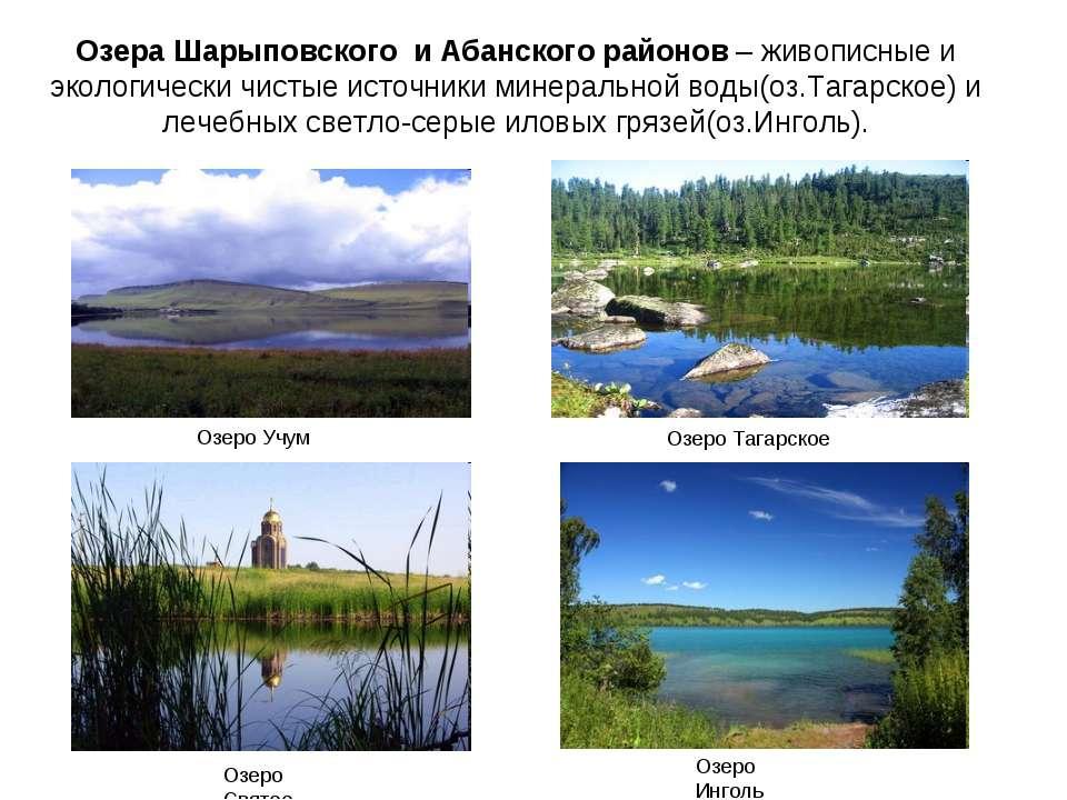 Озера Шарыповского и Абанского районов – живописные и экологически чистые ист...