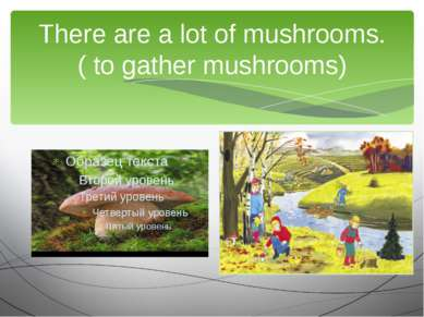 There are a lot of mushrooms. ( to gather mushrooms) We are going to …