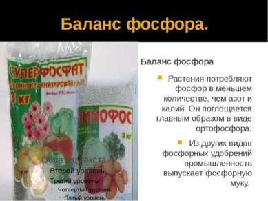 Баланс фосфора. Баланс фосфора Растения потребляют фосфор в меньшем количеств...