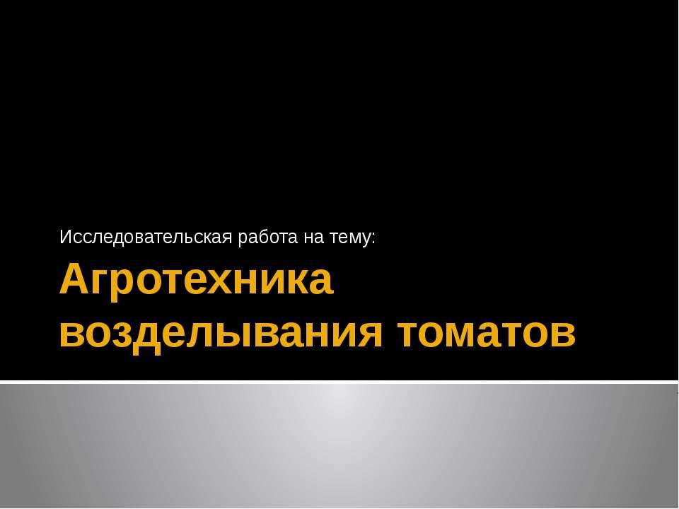 Агротехника возделывания томатов  Исследовательская работа на тему: