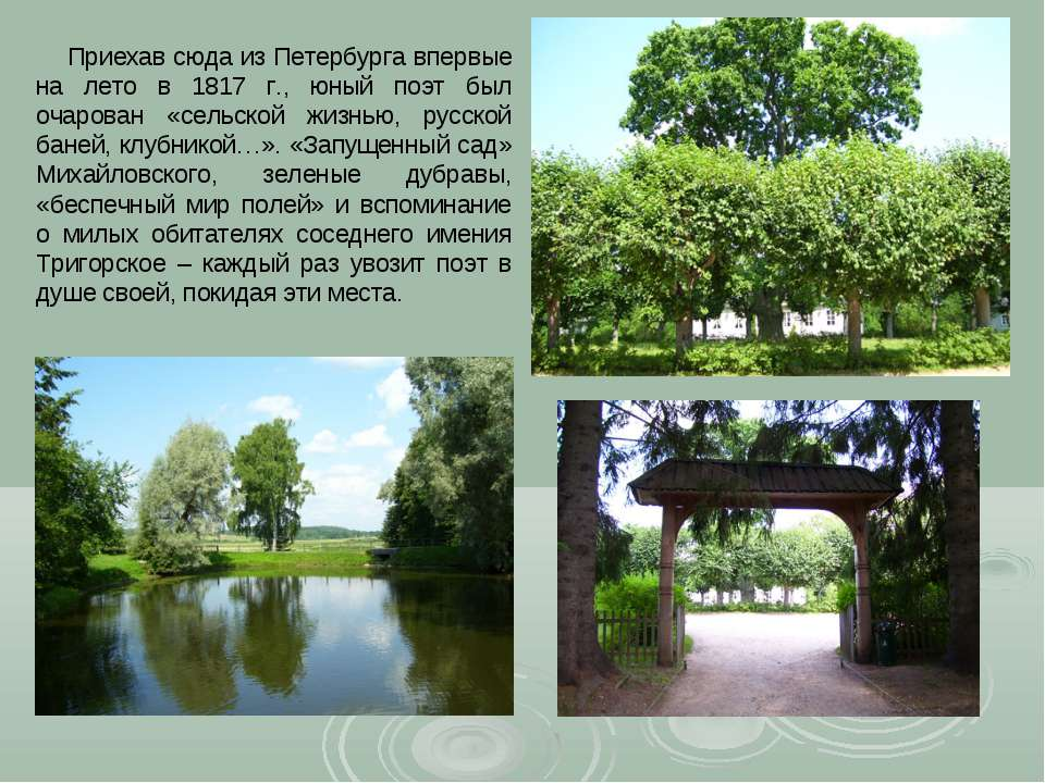 Приехав сюда из Петербурга впервые на лето в 1817 г., юный поэт был очарован ...