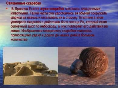 Священные скарабеи В Древнем Египте жуки-скарабеи считались священными животн...