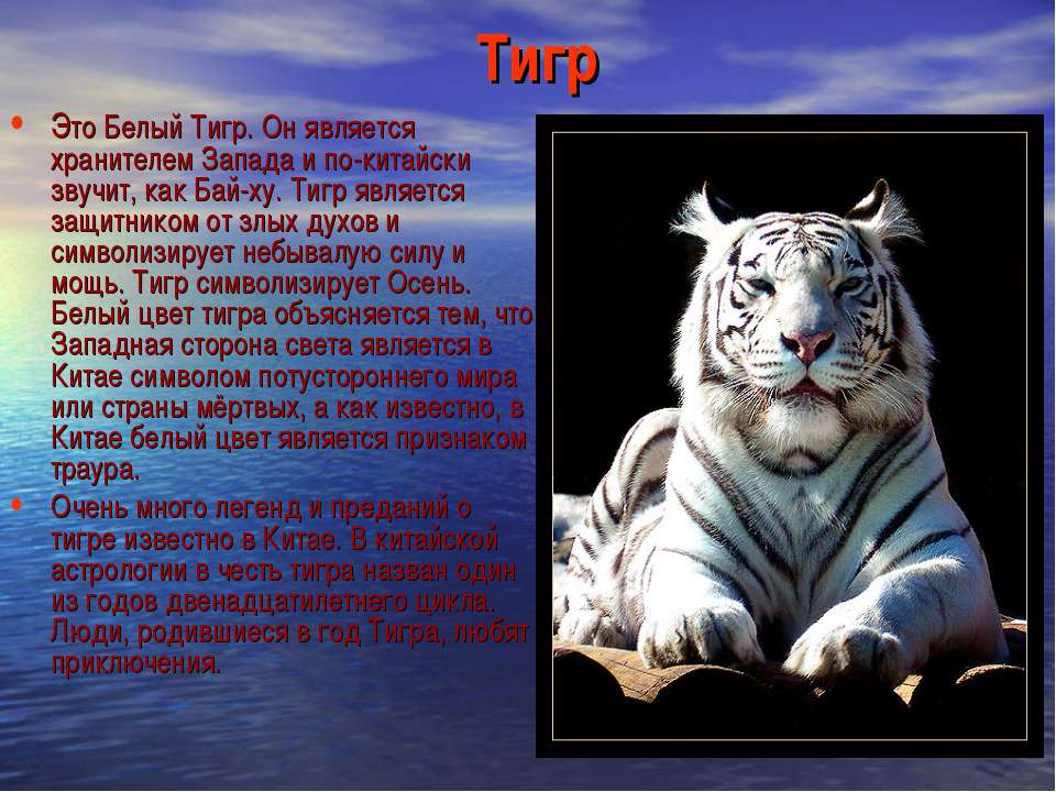 Тигр Это Белый Тигр. Он является хранителем Запада и по-китайски звучит, как ...