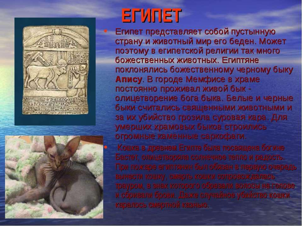 ЕГИПЕТ Египет представляет собой пустынную страну и животный мир его беден. М...