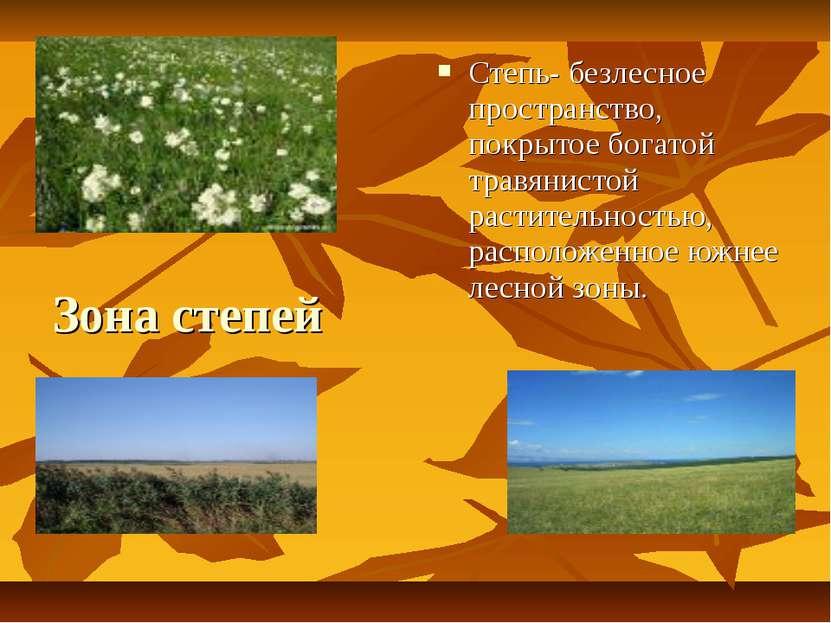 Зона степей Степь- безлесное пространство, покрытое богатой травянистой расти...