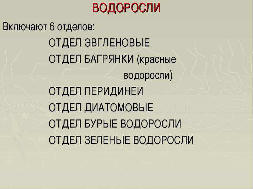 ВОДОРОСЛИ Включают 6 отделов: ОТДЕЛ ЭВГЛЕНОВЫЕ ОТДЕЛ БАГРЯНКИ (красные водоро...
