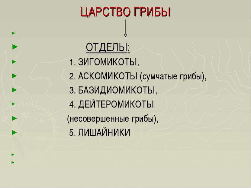 ЦАРСТВО ГРИБЫ   ОТДЕЛЫ: 1. ЗИГОМИКОТЫ, 2. АСКОМИКОТЫ (сумчатые грибы), 3. Б...