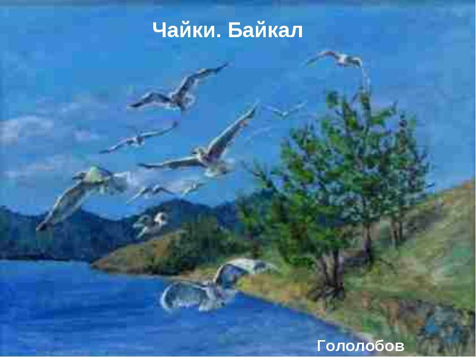 Гололобов Максим. Чайки. Байкал