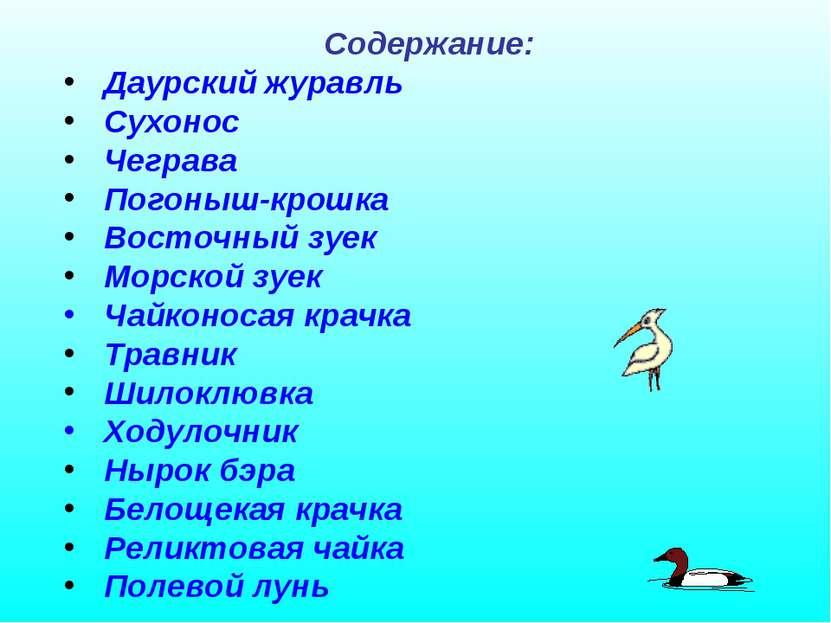 Содержание: Даурский журавль Сухонос Чеграва Погоныш-крошка Восточный зуек Мо...