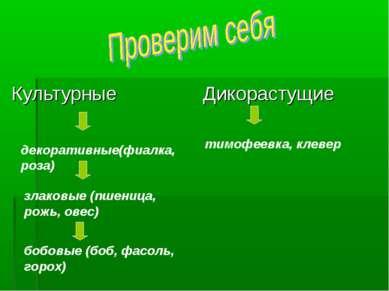 Культурные Дикорастущие тимофеевка, клевер декоративные(фиалка, роза) злаковы...