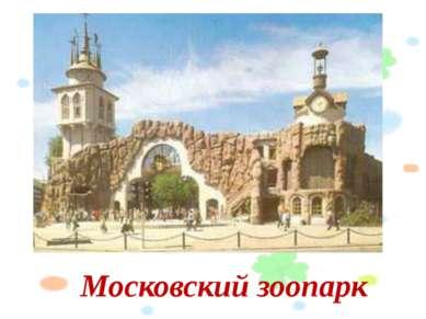 Московский зоопарк Слайд №8