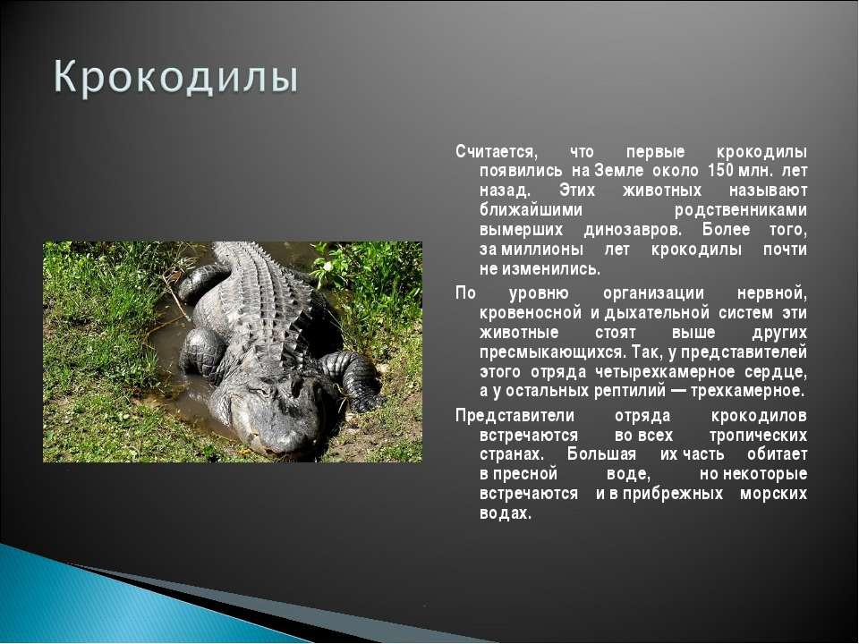 Считается, что первые крокодилы появились наЗемле около 150млн. лет назад. ...