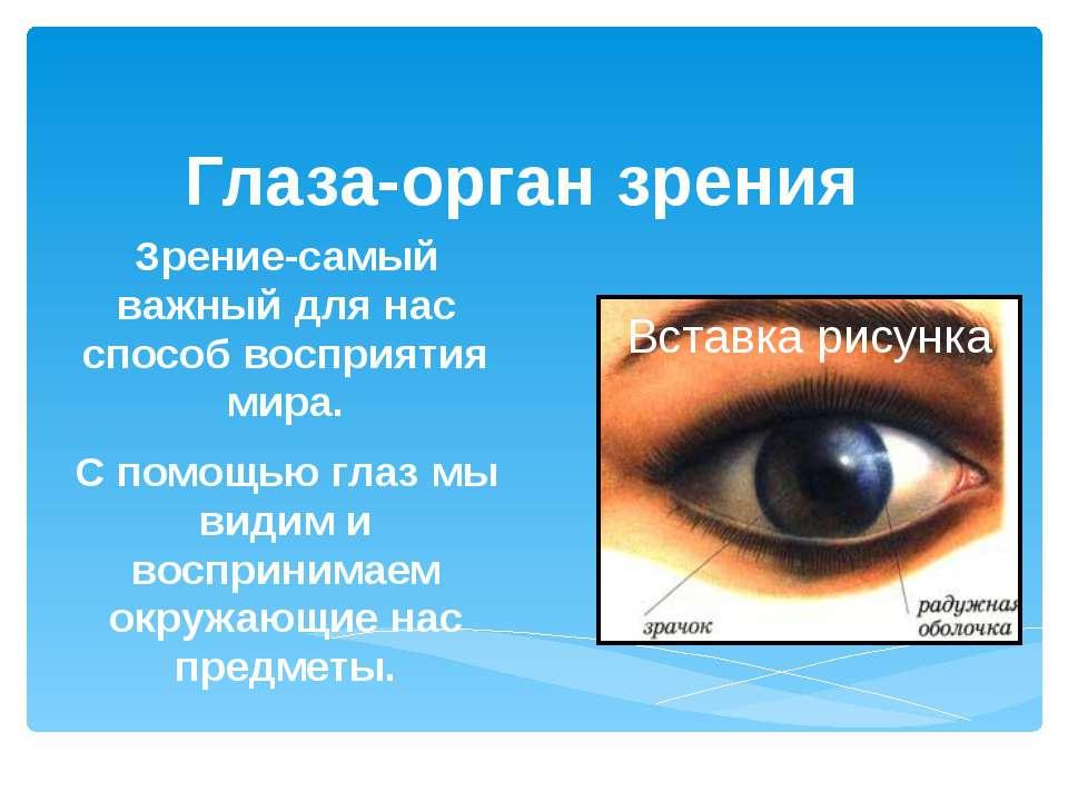 Глаза-орган зрения Зрение-самый важный для нас способ восприятия мира. С помо...