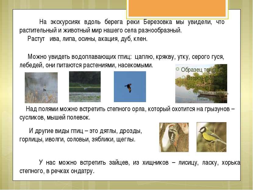 На экскурсиях вдоль берега реки Березовка мы увидели, что растительный и живо...