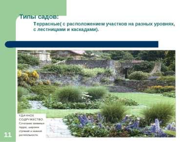 * * Типы садов: террасные( с расположением участков на разных уровнях, с лест...