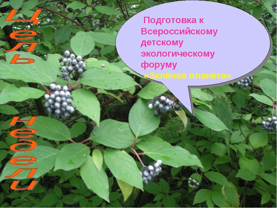 Подготовка к Всероссийскому детскому экологическому форуму «Зелёная планета»