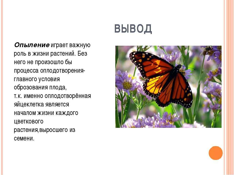 ВЫВОД Опыление играет важную роль в жизни растений. Без него не произошло бы ...